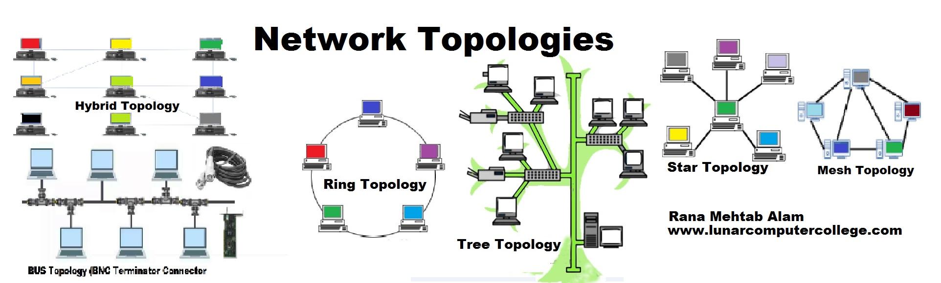 network typologies